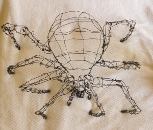 Joe the Cat-Faced Spider top view - Sarah Farr - age 22