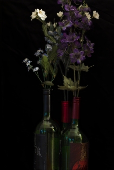 Apothic Wine | Farr Out Fine Art