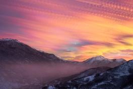 Lone Horn Sunrise